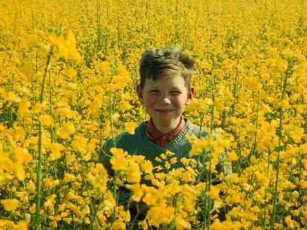 garçon et fleurs